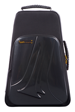 BAM TREK3024SC NEW TREKKING 2 Trumpets Case, Carbon